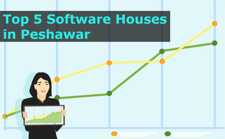 top 5 software houses in Peshawar