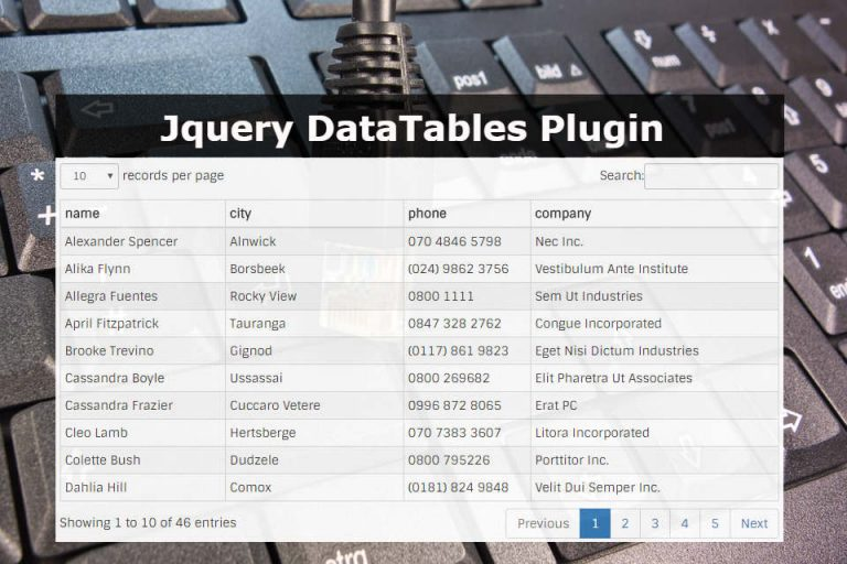 Jquery Datatables Plugin